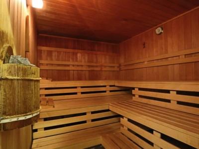 Hotel Schloss Fernsteinsee Sauna